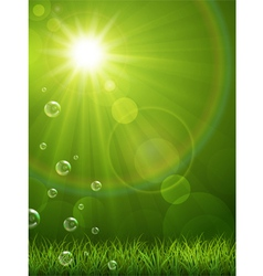 Summer green background vector