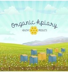 Apiary in alpine meadows mountains Honey Farm vector image vector image