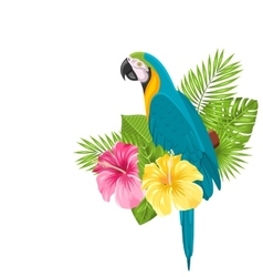 Parrot ara colorful exotic flowers blossom and vector