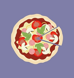 Pizza food icon vector image vector image