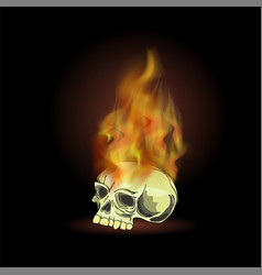 burning old human skull with fire flame vector image