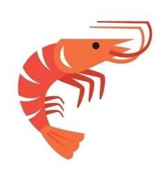 color prawn vector image