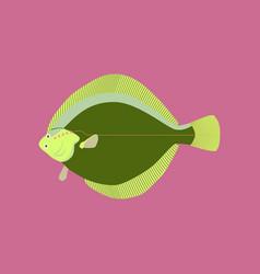in flat style flatfish vector image