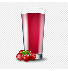 Juice of cranberry transparent background vector
