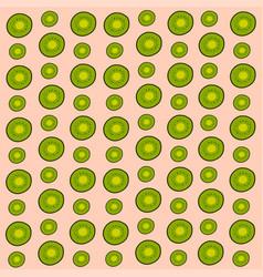 kiwi background on white background vector image