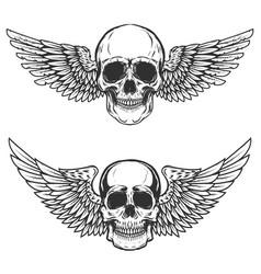 Set winged skulls isolated on white background vector