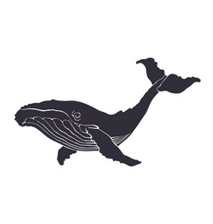 silhouette big whale underwater fauna and sea vector image