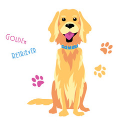 Sketch funny golden retriever dog sitting vector