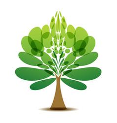 decorative tree logo vector image