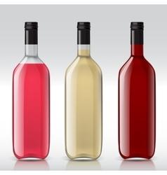 Set of transparent bottles for different wines vector image