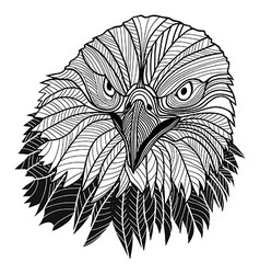Bird bald eagle head vector image vector image