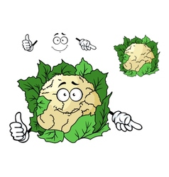 Cute happy cartoon cauliflower vector
