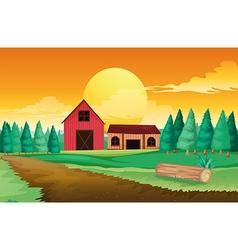 Farm houses near the pine trees vector image