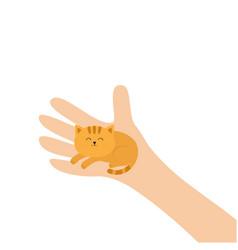 hand arm holding orange red cat adopt animal pet vector image