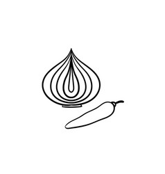 onion bulb and chili pepper hand drawn sketch icon vector image
