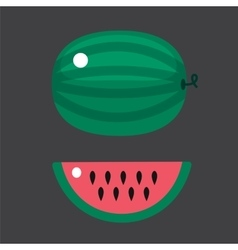 Ripe striped watermelon isolated on white vector