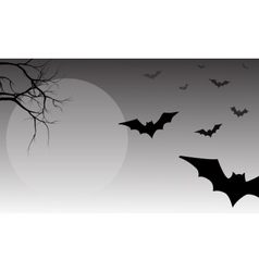 Silhouette of bat halloween vector image