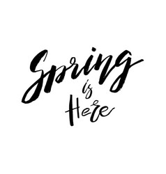 Spring is here - hand drawn inspiration quote vector