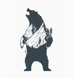 standing bear vector image