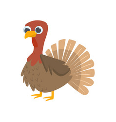 Big brown standing bird turkey cock isolated on vector