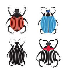 Colorado potato beetle icons in flat design vector