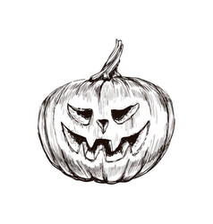 halloween pumpkin hand drawing vector image
