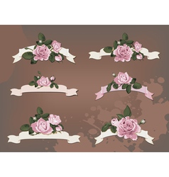 collection of a different ribbon roses vector image