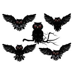 Black Owl vector image vector image