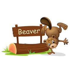 A beaver performing a handstand beside a signboard vector image