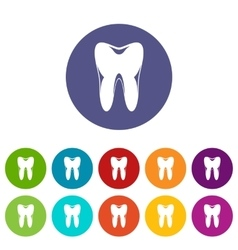 Human tooth set icons vector image