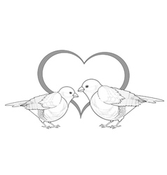 A monochrome sketch of birds with a heart vector
