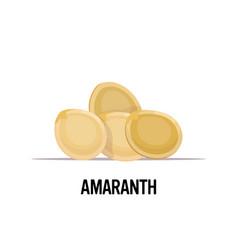 Amaranth seeds organic healthy vegetarian food vector