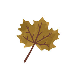 flat cartoon autumn vector image