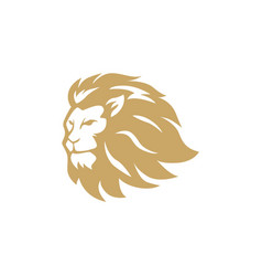 gold angry lion head logo sign design vector image