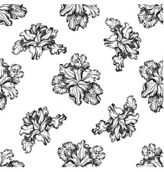 seamless pattern with black and white iris vector image