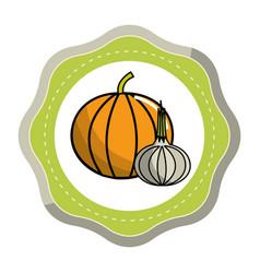 Sticker pumpkin and garlic vegetable icon vector