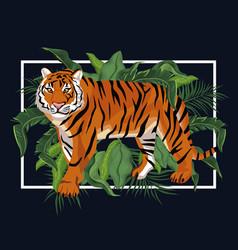 Tiger in jungle vector