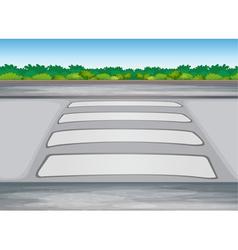 zebra crssing on a road vector image