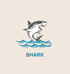 Angry shark icon vector