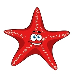 Cartoon tropical red starfish character vector image