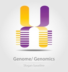 Genome analysisgenomics business icon vector