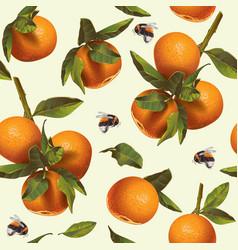 mandarin fruit pattern vector image