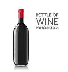 Realistic of glass bottles for wine vector image