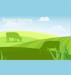 rural landscape organic farming vector image
