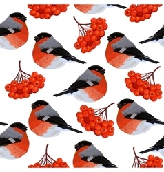 seamless pattern with rowan and bullfinches vector image