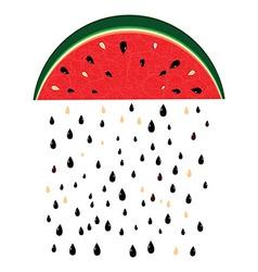 Watermelon rain fresh slices background vector