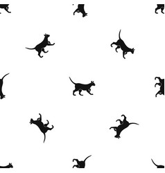 cat pattern seamless black vector image