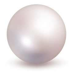 White Pearl isolated on white background EPS 10 vector image