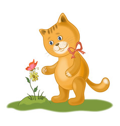 cat flower and butterfly vector image
