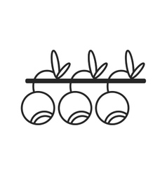 Flat linear icon berry and fruit object vector